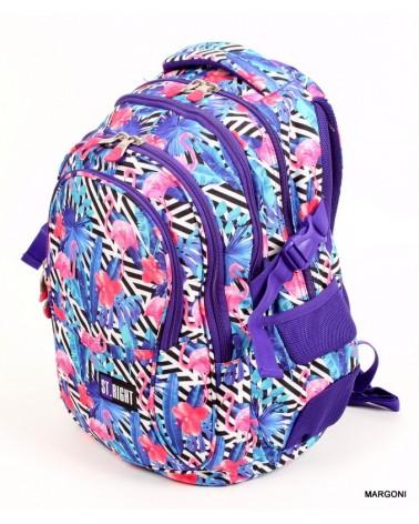 Plecak szkolny st-reet bp-01 Pink Blue